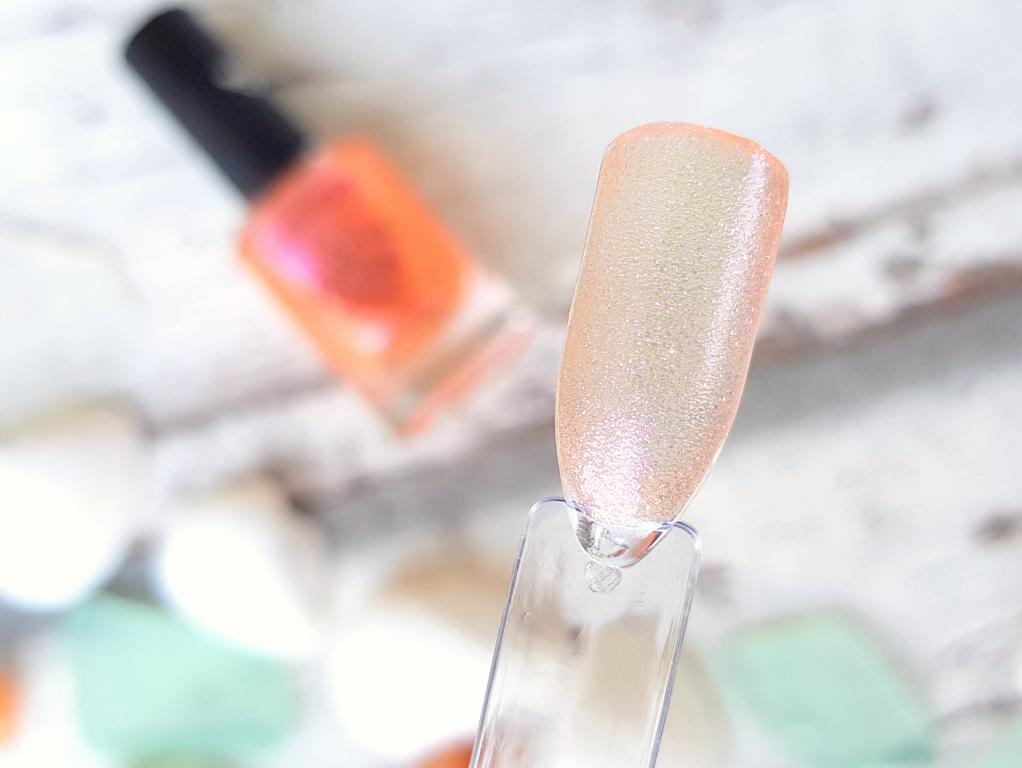 Müller Look Box Summer Dreaming Edition Catrice Nagellack